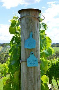 Heartbreak Grape Wine Blog
